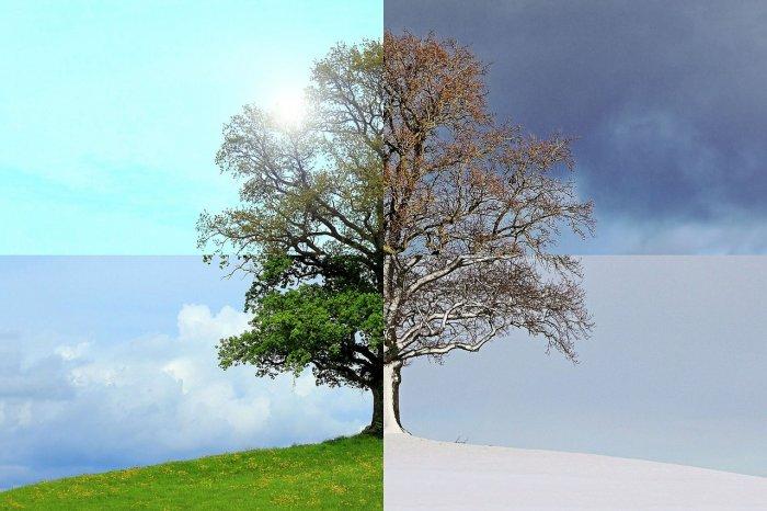 Животът в Поморие в четири сезона